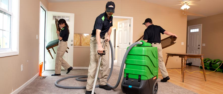 Elmwood Park, IL cleaning services